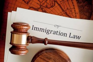 IMMIGRATION_IMG